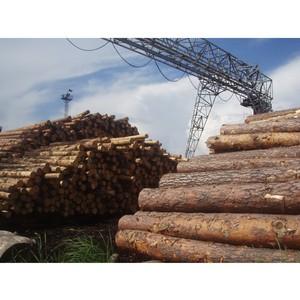 Экспорт Томского леса за 2015 год вырос на 165 тысяч кубометров