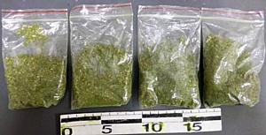 Брянская таможня противостоит проникновению наркотических веществ на территорию страны