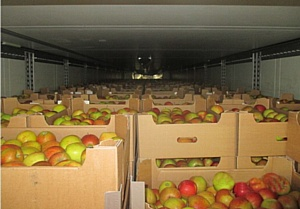 И вновь яблоки вместо полиуретана