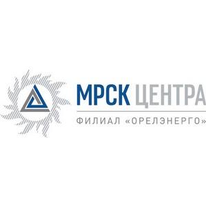 В филиале ОАО «МРСК Центра» - «Орелэнерго» провели торги