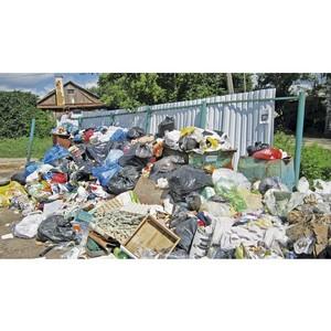 Активисты Народного фронта обеспокоены проблемой с вывозом мусора в Семилуках