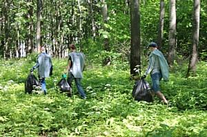 Активисты ОНФ Мордовии продолжают ликвидировать свалки