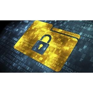 Что такое вирус-шифровальщик и как от него спасти компьютер?