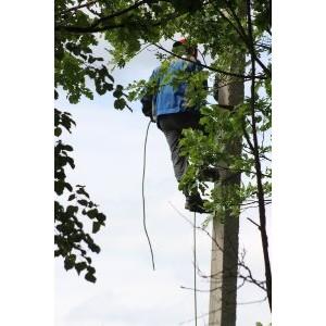 В Костромаэнерго подвели промежуточные итоги ремонтной кампании