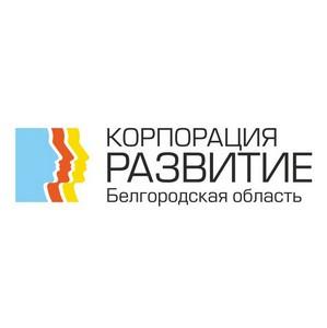 Инвестиционный портал Белгородской области популярен не только среди россиян