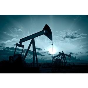 Виды кабеля, применяемые в нефтеперерабатывающей и нефтедобывающей промышленности