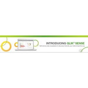 Первый обучающий вебинар по Qlik Sense: эволюция систем бизнес-анализа