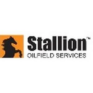 Stallion назначила Дэвида К. Мэннона главным исполнительным директором.