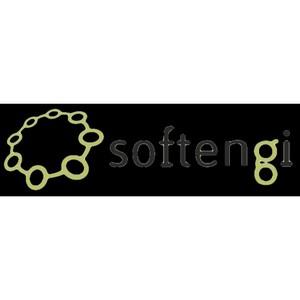 Softengi: корпоративная социальная ответственность - это не PR, а способ ведения бизнеса