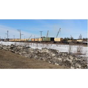 В Томске выявлена контрабанда лесоматериалов в крупном размере