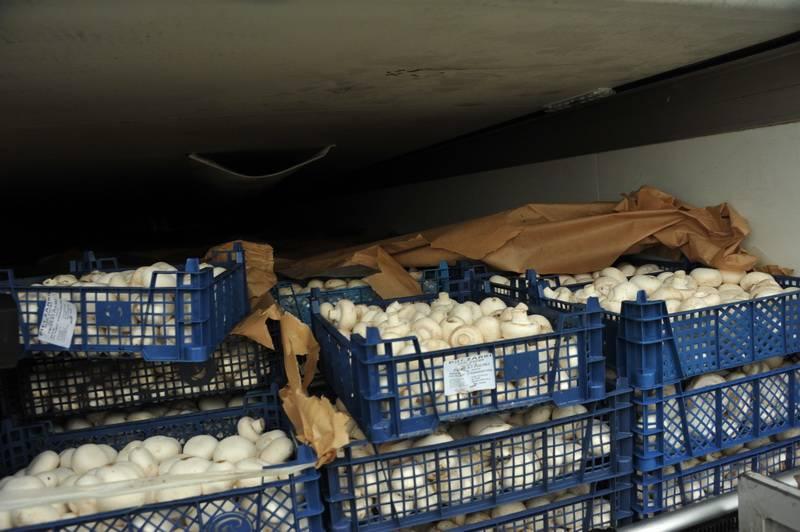Смоленские таможенники задержали 170 тонн товаров, включенных в санкционный перечень