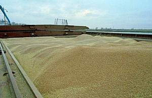 О транзите продовольствия через Ростовский речной порт в июле 2016 г.