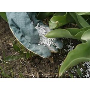 О непринятии мер по сохранению плодородия почв