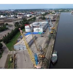 Нацрыбресурс представит руководителю Росрыболовства проект рыбного кластера в Калининграде