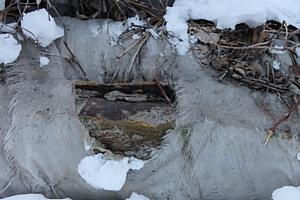 ОНФ обратил внимание Главного контрольного управления Челябинской области на проблему теплосетей