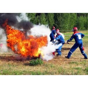 Филиал «Мариэнерго» обеспечивает штатную работу энергосистемы в пожароопасный период