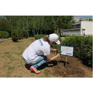Волгоградская команда «Молодежки ОНФ» приняла участие в акции «Аллея героев»