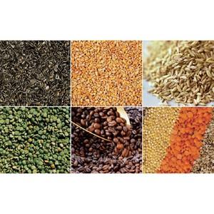 Шнуровая книга учета семян необходима семеноводу
