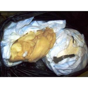 В ручной клади пассажира из Азербайджана выявлена опасная молочная продукция