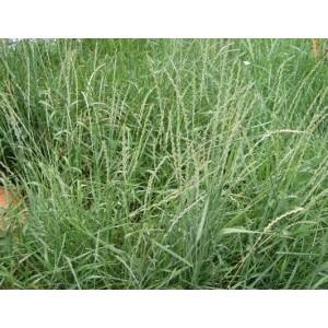 Об охране земель сельскохозяйственного назначения