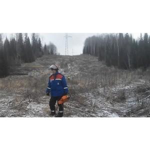 Кузбасские энергетики расширяют просеки ЛЭП в Горном Алтае