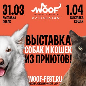 Фестиваль Woof в поддержку животных из приютов состоится 31 марта и 1 апреля 2018 г.