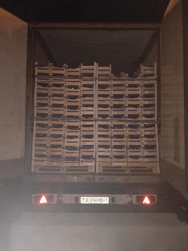 Первые партии польских груш нового урожая общим весом 40 тонн задержаны смоленскими таможенниками