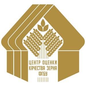 Сотрудники Алтайского филиала были удостоены наград Минсельхоза и ФГБУ «Центр оценки качества зерна»
