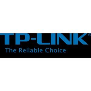 Компания TP-Link сохраняет лидерство в России и по всему миру