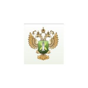 ИЛ Волгоградского филиала получила Свидетельство об участии в МСИ