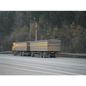 Досмотр грузов, по итогам шести месяцев 2015г