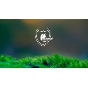 Активисты ОНФ добились создания «зеленого щита» вокруг Грозного