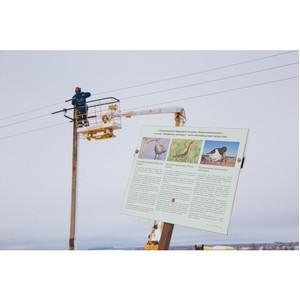 В Подмосковья установили около 500 птицезащитных устройств в заказнике «Журавлиная родина»