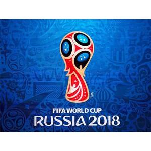 Постановка на миграционный учет иностранцев в период чемпионата мира по футболу FIFA 2018 года