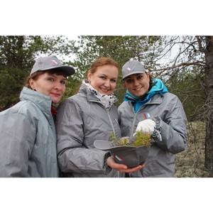 јктивисты ќЌ' в оми прин¤ли участие во всероссийском дне посадки леса
