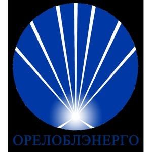 АО «Орёлоблэнерго» заключило 194 договора технологического присоединения