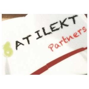 Новые возможности партнерской программы Atiletk.NET для тех, кто зарабатывает на создании сайтов