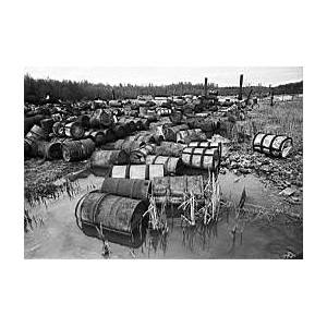 «ГазЭнергоСтрой»: полигон «Красный бор» готовят к рекультивации