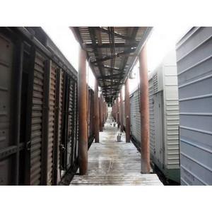 285 тонн кормовых отрубей прошли ветеринарный контроль для отправки в Монголию
