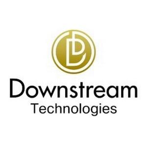 Компания Downstream Technologies выступила на V Международном форуме по КСО