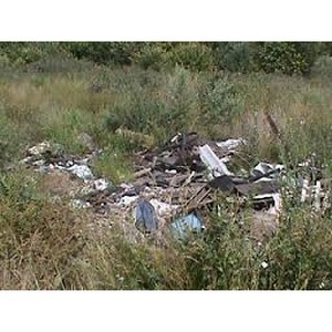 Управление Россельхознадзора обнаружило в Россошанском районе свалку ТБО на землях сельхозназначения