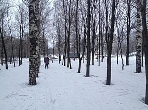 После сигнала кировских активистов ОНФ власти нашли безопасное место для занятий детей физкультурой