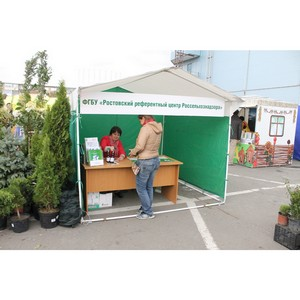 Садоводы и дачники получили грамотные советы и рекомендации