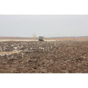 Об итогах работы Управления Россельхознадзора в области земельного надзора за октябрь 2015 года