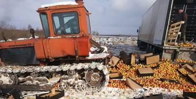 Более 40 тонн «санкционки» уничтожено смоленскими таможенниками