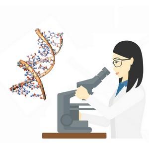 Экспертно-правовой центр «Прометей» открывает новое направление — проведение экспертизы ДНК