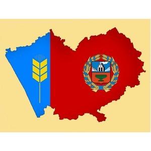 Дорожная карта: 18 лет развития системы «Дело» в Алтайском крае
