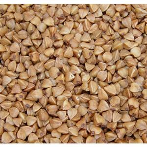 Выявлены нарушения требований техрегламента «О безопасности зерна»