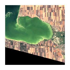 OpenWeatherMap: использование спутниковых данных для снижения рисков на рынке сельского хозяйства
