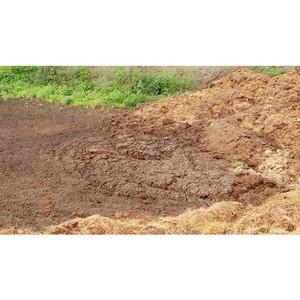 Активисты ОНФ добиваются вывоза отходов фермерского хозяйства с территории села в Исетском районе